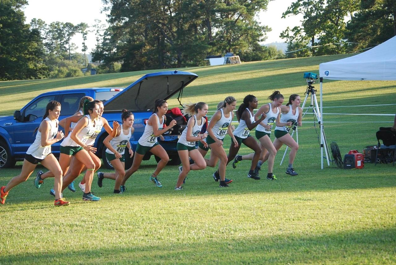 Men and Women's Cross Country Update