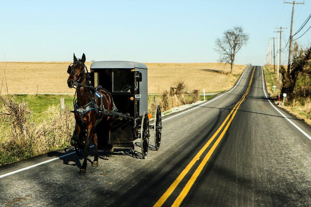 Opinion: TBH, A Horse and Buggy Would Beat the Piedmont Shuttle (April Fools)